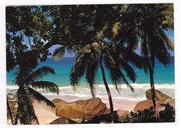 Beach View Mahé Seychelles Photo Peter Erbe N°122 VOIR TIMBRE Oiseaux Zegret 1985 Postée De Victoria En 1987 - Seychelles