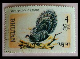 110. BHUTAN (4CH) USED STAMP BIRDS, GREY PEACOCK- PHEASANT. - Bhoutan