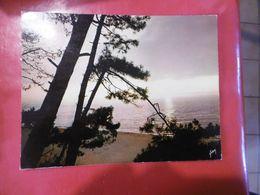 à Identifier - Coucher De Soleil Sur La Mer-  Format: 197mm Sur 150mm - Cartoline