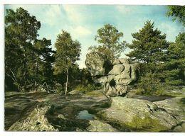 77   EN FORÊT De FONTAINEBLEAU   Le Sphinx Des Druides à Franchard - Fontainebleau