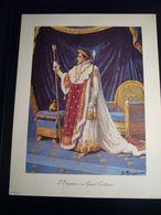 NAPOLEONE BONAPARTE  IMPERATORE   RIPRODUZIONE DI STAMPA ANTICA   35 X 27 CM - Vieux Papiers