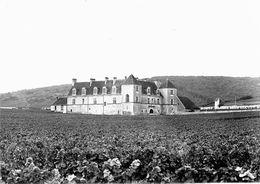 7028 - 21 - CÔTE D'OR - Environs De NUITS SAINT GEORGES - Chateau Du Clos De Vougeot - Nuits Saint Georges