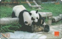 Very Nice Thailand  Phonecard  True Panda Bear - Phonecards
