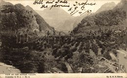 DOMINICA. VIEW OF THE ROSEAU VALLEY - Dominica