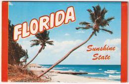 Florida Sunshine State - & 12 Views Lettercard Complete - Stati Uniti