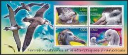 TAAF 2010 - Yv. BF 24 **     - Feuillet Oiseau Albatros D'Amsterdam (4 Val.)  ..Réf.TAF21092 - Blocs-feuillets