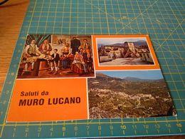 153951 Cartolina Usata Per Concorso  Saluti Da Muro Lucano  Potenza - Potenza