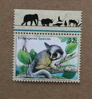 NY98-01 : Nations-Unies (New-York) / Protection De La Nature - Galago Du Sénégal (Galago Senegalensis) - Unused Stamps