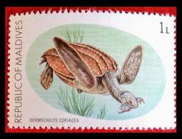 110. MALDIVES (1L) USED STAMP TURTLES. - Montserrat