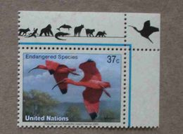 NY03-01 : Nations-Unies (New-York) / Protection De La Nature - Ibis Rouge (Eudocimus Ruber) - Unused Stamps