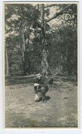 Bel Homme Dans Les Bois - Personnes Anonymes