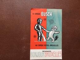 PROGRAMME CIRQUE  LE CIRQUE BUSCH  Au Cirque Royal-Bruxelles  BELGIQUE  Année 1961 - Programme