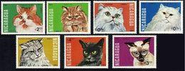 Nicaragua 1984. Fauna. Animals. Cats.  MNH. - Nicaragua