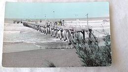 Argentina Buenos Aires Santa Teresita Beach Plage Carte Postale Postcard #14 - Argentine