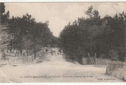 *** 44  ***  Ste Marguerite Par Pornichet Une Avenue Dans Les Bois De Pins - Neuve TTB - Pornichet