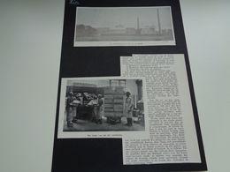 Origineel Knipsel ( 2607 ) Uit Tijdschrift   1928 :   Lierre   Lier - Vieux Papiers