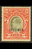"""1903  5s Black And Scarlet, Wmk Crown CC, Opt'd """"SPECIMEN"""", SG 23s, Very Fine Mint. For More Images, Please Visit Http:/ - Montserrat"""