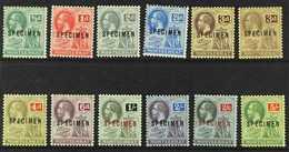 """1916-22  Complete Set, Overprinted """"SPECIMEN"""", Plus 3d Pale Yellow, SG 49/59s, Fine Mint. (12 Stamps) For More Images, P - Montserrat"""