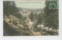 PLOMBIERES LES BAINS (environs) - La Vallée Des Roches - Plombieres Les Bains