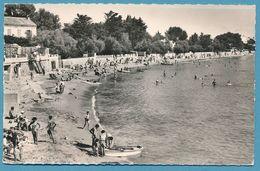 Côte D'Azur - LES SABLETTES - La Plage De Mar-Vivo (animation) - Photo Véritable Circulé 1959 - France