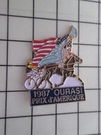 1420 Pin's Pins / Beau Et Rare / THEME : ANIMAUX / CHEVAL TROTTEUR 1987 OURASI PRIX D'AMERIQUE STATUE DE LA LIBERTE - Animales