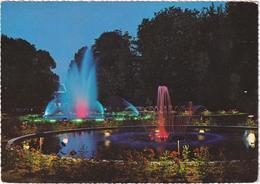 Brasschaat - Gemeentepark Bij Nacht - Brasschaat