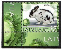 Latvia 2011 . Rabbit. 1v: 35 . Michel # 800 - Lettonie