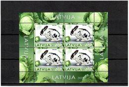 Latvia 2011 . Rabbit. 1v: 35 . Michel # 800  KB - Lettonie