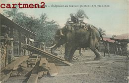 MADRAS ELEPHANT AU TRAVAIL PORTANT DES PLANCHES INDE INDIA - India
