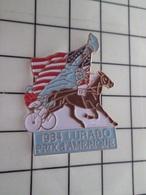1420 Pin's Pins / Beau Et Rare / THEME : ANIMAUX / CHEVAL TROTTEUR 1984 LURABO  PRIX D'AMERIQUE STATUE DE LA LIBERTE - Animales