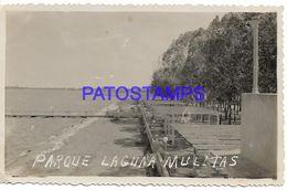 137831 ARGENTINA BUENOS AIRES LAGUNA MULITAS PARQUE PHOTO NO POSTAL POSTCARD - Argentine