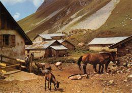 74-VACHERESSE-N°TB3574-B/0265 - Vacheresse