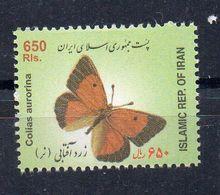 IRAN - 2004 - PAPILLONS - BUTTERFLIES - COLIAS AURORINA - 650 - - Irán