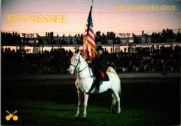 Tennessee The Volunteer State Tennessee Walking Horse - Autres