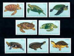 Suriname, 1982, Turtles, Tortoises, Animals, MNH, Michel 970-977 - Surinam