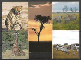 KENYA VIEW CARD ,POSTCARD CHEETAH , GIRAFFE , ZEBRA - Kenia