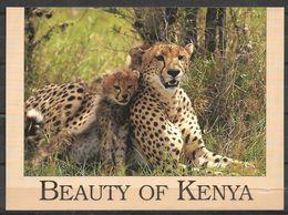 KENYA VIEW CARD ,POSTCARD CHEETAH MOTHER AND CUB - Kenia