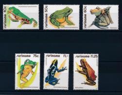 Suriname, 1981, Frogs, Amphibians, Animals, Fauna, MNH, Michel 948-953 - Surinam