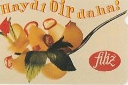 FILIZ 100 TKB29 Luxe - Turquie