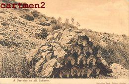 LIBAN A BEE-HIVE ON MONT-LEBANON SARRAFIAN BEIRUT BEYROUTH - Lebanon