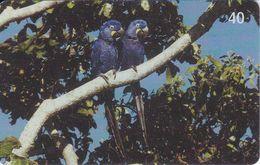TARJETA DE BRASIL DE 2 GUACAMAYOS (5-8) (BIRD-PAJARO-PARROT)  WWF - Parrots