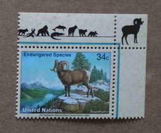 NY02-01 : Nations-Unies (New-York) / Protection De La Nature - Mouflons Des Rocheuses (Ovis Canadensis) - Unused Stamps