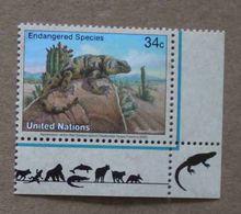 NY02-01 : Nations-Unies (New-York) / Protection De La Nature - Chuckwalla De San Esteban (Sauromalus Varius) - Unused Stamps