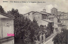 Photo : Siena : Orto Botanico, Photo Of Old Postcard, 2 Scans - Places