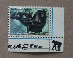 NY00-01 : Nations-Unies (New-York) / Protection De La Nature - Chimpanzé Nain (Pan Paniscus) - Unused Stamps