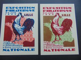 Très Belle Paire De Cartes Postales Déssinée Par Draim Pour L'exposition Philatélique De Lille De 1933 - Postal Stamped Stationery