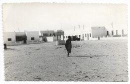 SAHARA ESPAGNOL - CARTE PHOTO - Place De La Guerre...1961  Animé  (Aauin ??) - Sahara Occidentale