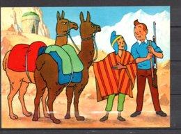 Tintin Et Le Temple Du Soleil - Tintin ,  Zorrino Et Les Lamas Devant Le Tombeau - Editions Yvon N° 20 - Stripverhalen