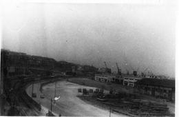 ALGERIE 1955 / Le Port D'Alger En 1955 - Guerre, Militaire