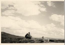 ALGERIE 1955 / Destruction Dépot De Munitions - Guerre, Militaire